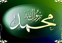 Милосердие Пророка (ﷺ) к враждовавшим с ним немусульманам. Абдулла ибн Убайи, Икрима ибн Абу Джахль