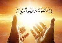 Над этими людьми ангелы рассыпают милость Аллаха...