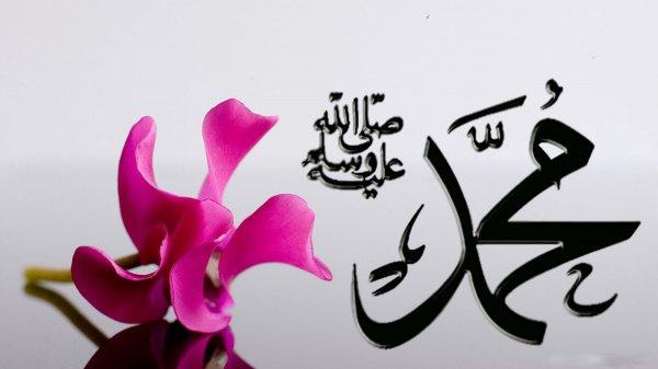 Воcхваление Мухаммада Мустафы (да благословит Аллах его и приветствует!)