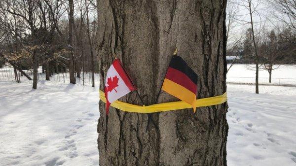 Флаг Германии в резиденции канадского генерал-губернатора.