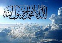 Кто из пророков выше по статусу: Адам (а.с.) или Мухаммад (с.г.в.)?