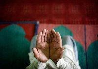 3 тысячи человек приняли ислам в ОАЭ