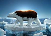 Названа очередная опасность глобального потепления для Земли