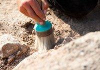 В Марокко обнаружили древнейшие следы человека