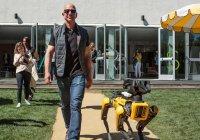 Самый богатый в мире человек выгулял собаку-робота (ФОТО)