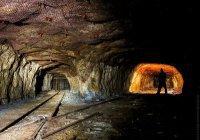 Россияне смогут провести отпуск на рудниках и заводах