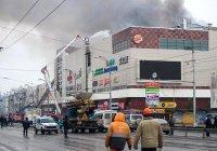Девочка из Казани пропала без вести при пожаре в Кемерово