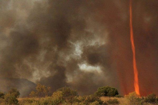 Посреди вихря появился дым и стал подниматься к небу, а внутри показался огонь