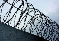 20 лет тюрьмы грозит гражданам Таджикистана за попытку вступить в ИГИЛ на Кубани