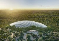 Крупнейшую оранжерею в мире построят во Франции