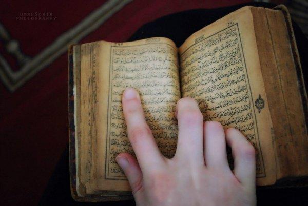 Таухид (единобожие) - это признание того, что Аллах один.