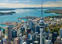 Компания из Новой Зеландии перешла на 4-дневную рабочую неделю