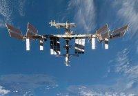 Российский космонавт сообщил о захвате МКС обезьянами (ФОТО)