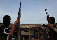 В МВД назвали число жителей Крыма в ИГИЛ