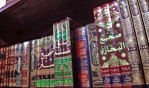 Ложь Ибн Таймии о мусульманских ученых