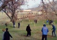 Жители Таджикистана и Киргизии устроили массовую драку на границе (Видео)