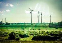 Компания Google установила «зеленый» рекорд