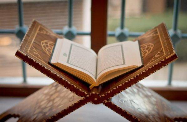 «Алиф. Лям. Мим. Это Писание, в котором нет сомнения, является верным руководством для богобоязненных»