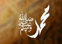 Благословенное рождение Пророка (ﷺ) на свет