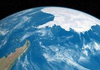 Первый урожай космических овощей собран в Антарктиде