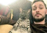 Сбежавший кот вернулся домой и стал мемом (ФОТО)