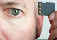 «Протез» для улучшения памяти создан в США
