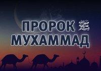 Что сказала Кааба, когда родился Пророк (ﷺ)?