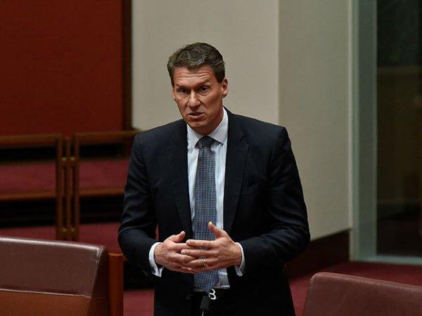 Кори Бернарди называют «австралийским Милоновым».