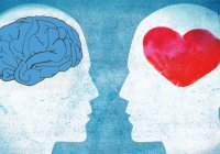 «Маленький мозг» в теле человека или место разума