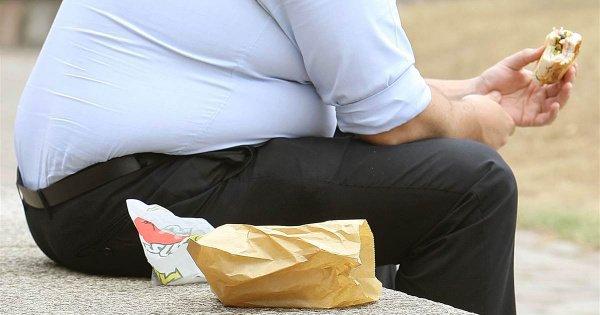 Бактерии лишают неуязвимости к избытку калорий и заставила быстро набрать вес