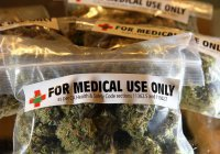 Израиль вознамерился стать экспортером марихуаны