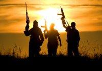 Международная конференция по борьбе с терроризмом пройдет в Иране