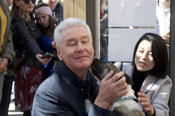 Глава города также поблагодарил всех москвичей, которые берут питомцев из приютов