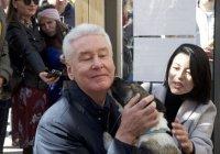 Мэр Москвы взял собаку из приюта