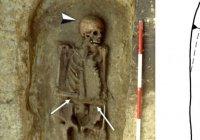 Первый в мире «киборг» найден в Италии