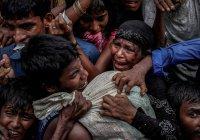 Серия репортажей о рохинджа принесла фотографу Пулитцеровскую премию (Фото)