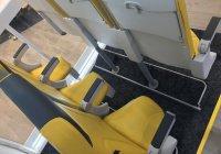 Стоячие места могут появиться в самолетах (ФОТО)