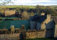 Злой барсук захватил замок в Шотландии