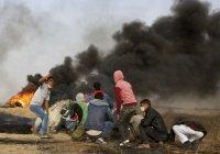 Экологи обеспокоены сжиганием шин палестинскими протестантами