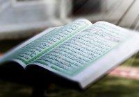 Суры Корана, спасающие от бедности, болезней и одиночества