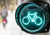В Казани состоится велосубботник
