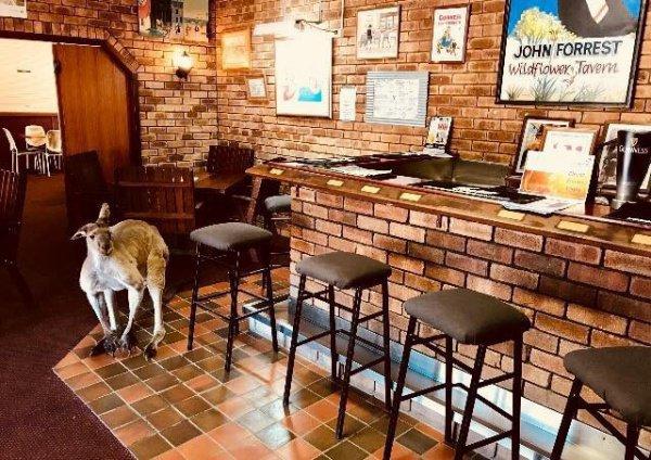Туристы и местные жители просто перестанут приезжать, когда заведение потеряет статус «кафе кенгуру»