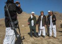 Талибы не ответили на предложение властей Афганистана о переговорах