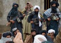 «Талибан» объявил о начале «весеннего наступления» на Афганистан