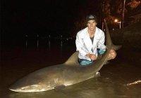 В Австралии рыбак 2 часа боролся с акулой