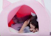 Кошачьи домики для людей начали выпускать в Японии (ФОТО)