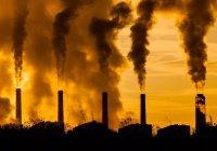 ВОЗ: 7 млн человек умирают из-за загрязнения воздуха каждый год