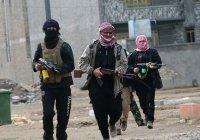 ИГИЛ пригрозило «пролить кровь» в Киргизии
