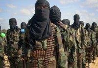 МИД РФ: ИГИЛ пытается обосноваться в Латинской Америке