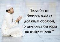 Эти 2 вещи Пророк (мир ему) назвал причиной гибели своей уммы